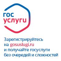 Электронное правительство. Портал государственных услуг.